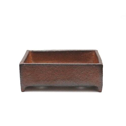 Tom Benda Bonsai Box24 12cm