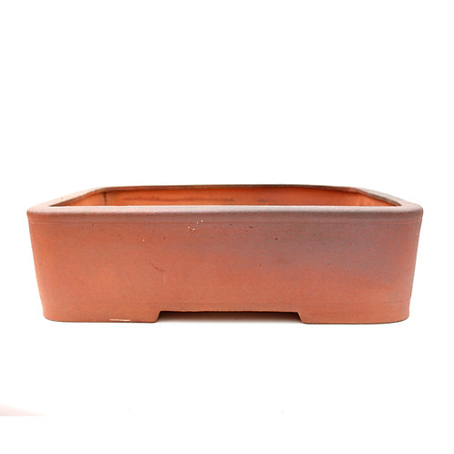 Isabelia Bonsai Pot 38cm