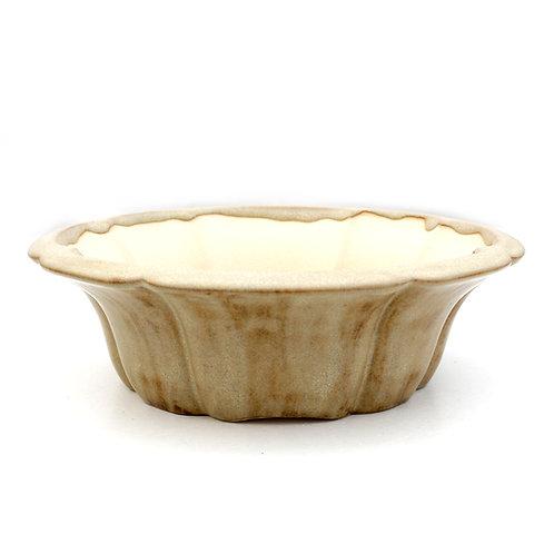 Raimondi Bonsai Pot 24cm