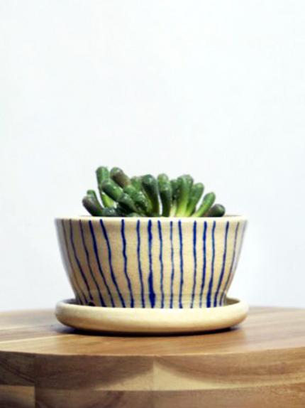 Ceramic Succulent Planter
