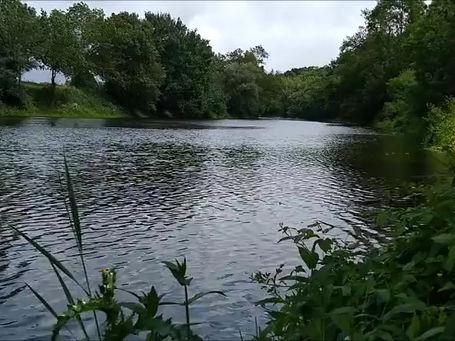 Moment de détente au bord de l'eau ...