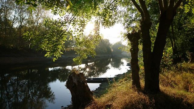 Calme et lumière d'un séjour en bord de Loire au gîte Murmures de Loire. Un endroit idéal pour se ressourcer en Maine et Loire