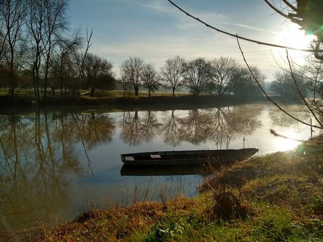 Gîte Murmures de Loire à Montjean : profitez d'un séjour calme au bord de la Loire, en pleine nature.