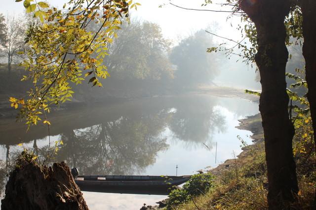 Réveil  aux chants des oiseaux au gîtes Murmures de Loire, en Maine et Loire