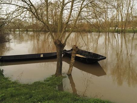 La Loire, un paysage très changeant !