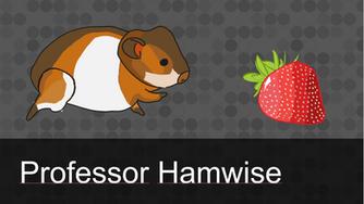 Professor Hamwise