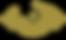 TN_DD.icon.gold.png