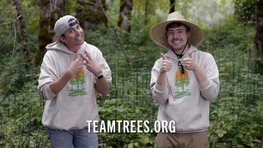 Team Trees Challenge