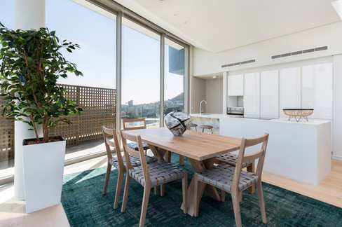 Bantry Hills Penthouse - Fabian Architects