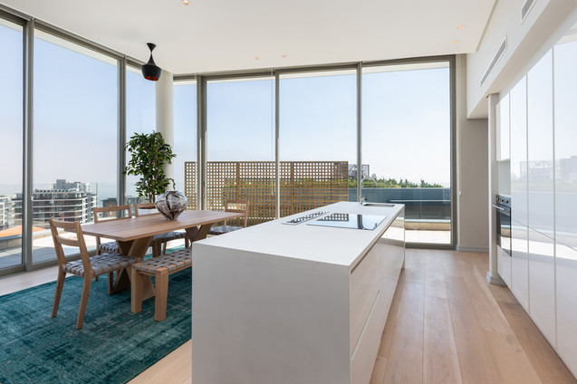 Bantry Hills Penthouse - Fabian Architects