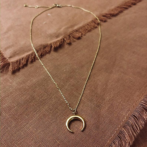 Horn/Crescent Moon Necklace