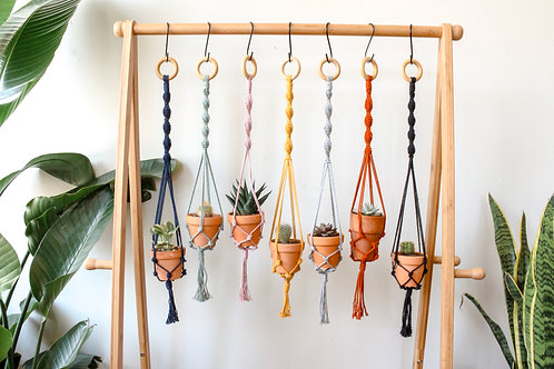 Mini Plant Hanger with Live Plant