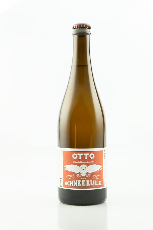 Schneeeule - Otto
