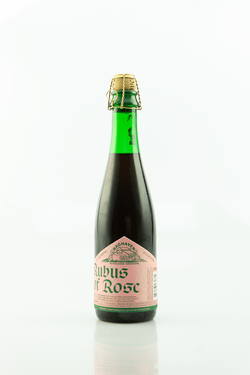Baghaven Rubus of Rose