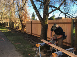Replacing Fence