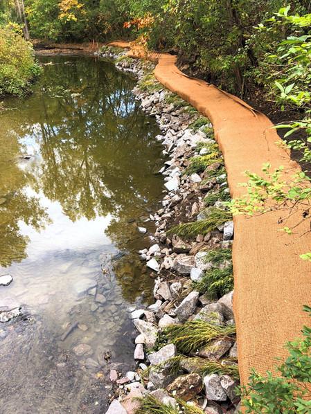 Rice Creek