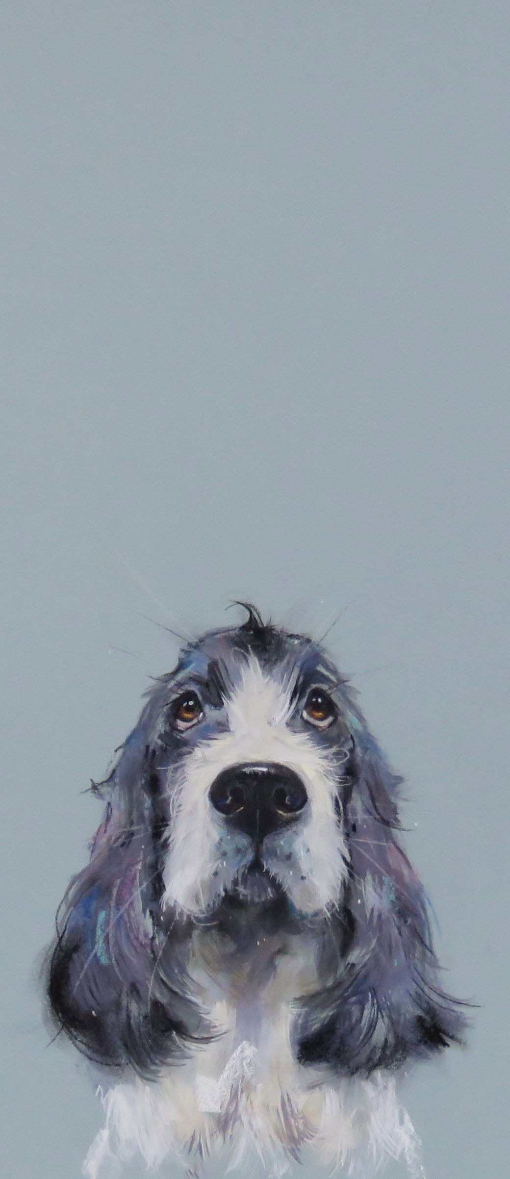 'Puppy Dog Eyes' available
