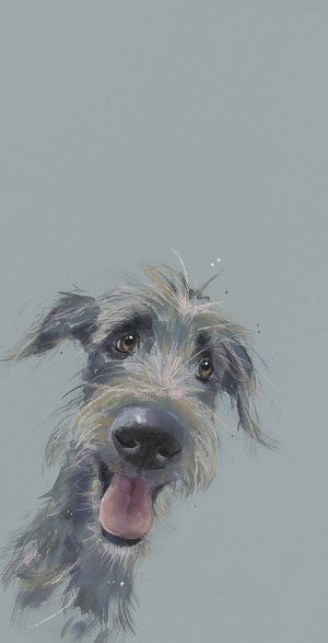 Scruffy Mutt - prints available