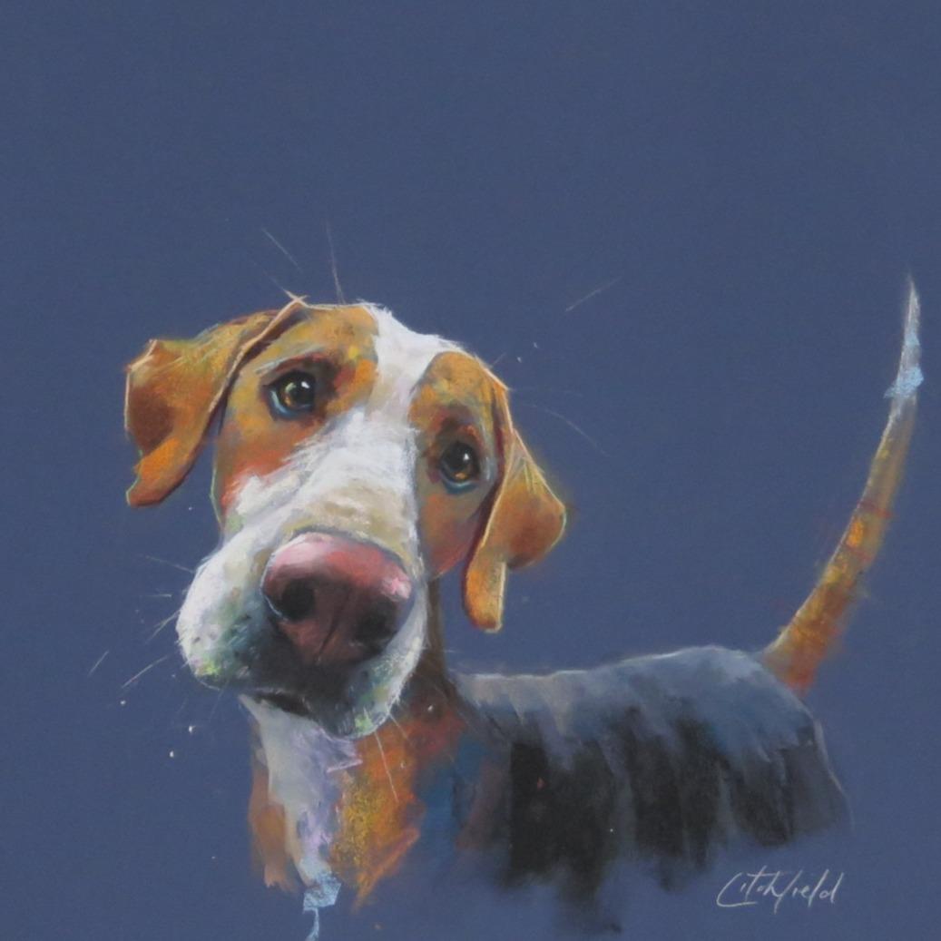 Hound Dog - available