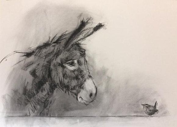 The Donkey & the Wren