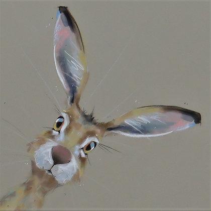 Howdy-do Hare