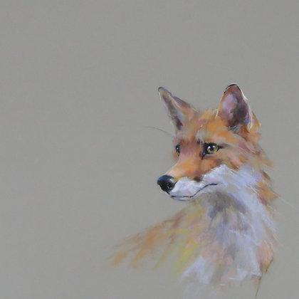 Handsome Mr Fox