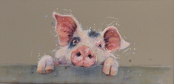 Friendly Piglet
