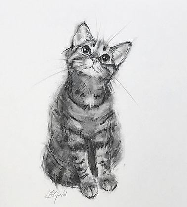 Kitty ( original charcoal )