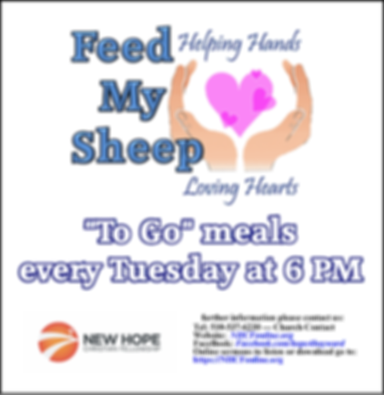 Feed My Sheep 4-20.png