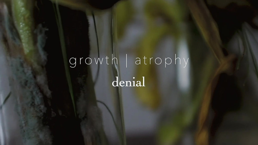 Growth Atrophy ii