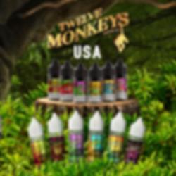 12 Monkeys USA.png