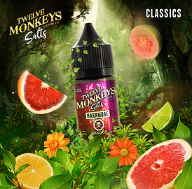 12 Monkeys Vapor | Salts