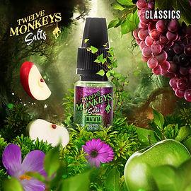 12 Monkeys EU Salts UK Matata.jpg