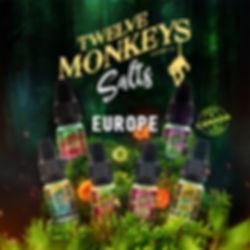12Monkeys-SALTS-10ML.jpg