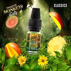 12 Monkeys EU Salts UK Mangabeys.jpg