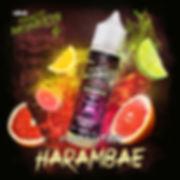 50ML 12M Classics Harambae Monkey Mix.jp