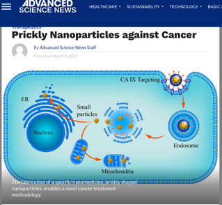 Therapeutics: Prickly Nanoparticles against Cancer
