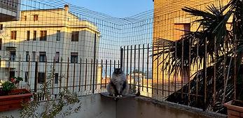 chiusura balcone.jpg