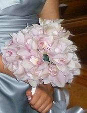 Bridesmaids Orchid Posy