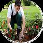 круглая рамка для фото на сайт флористов