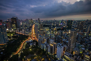Tokyo OverHead Shot Sunset.jpeg