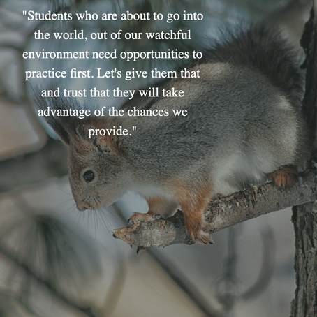 Teach Students to Go Out on a Limb With Learning