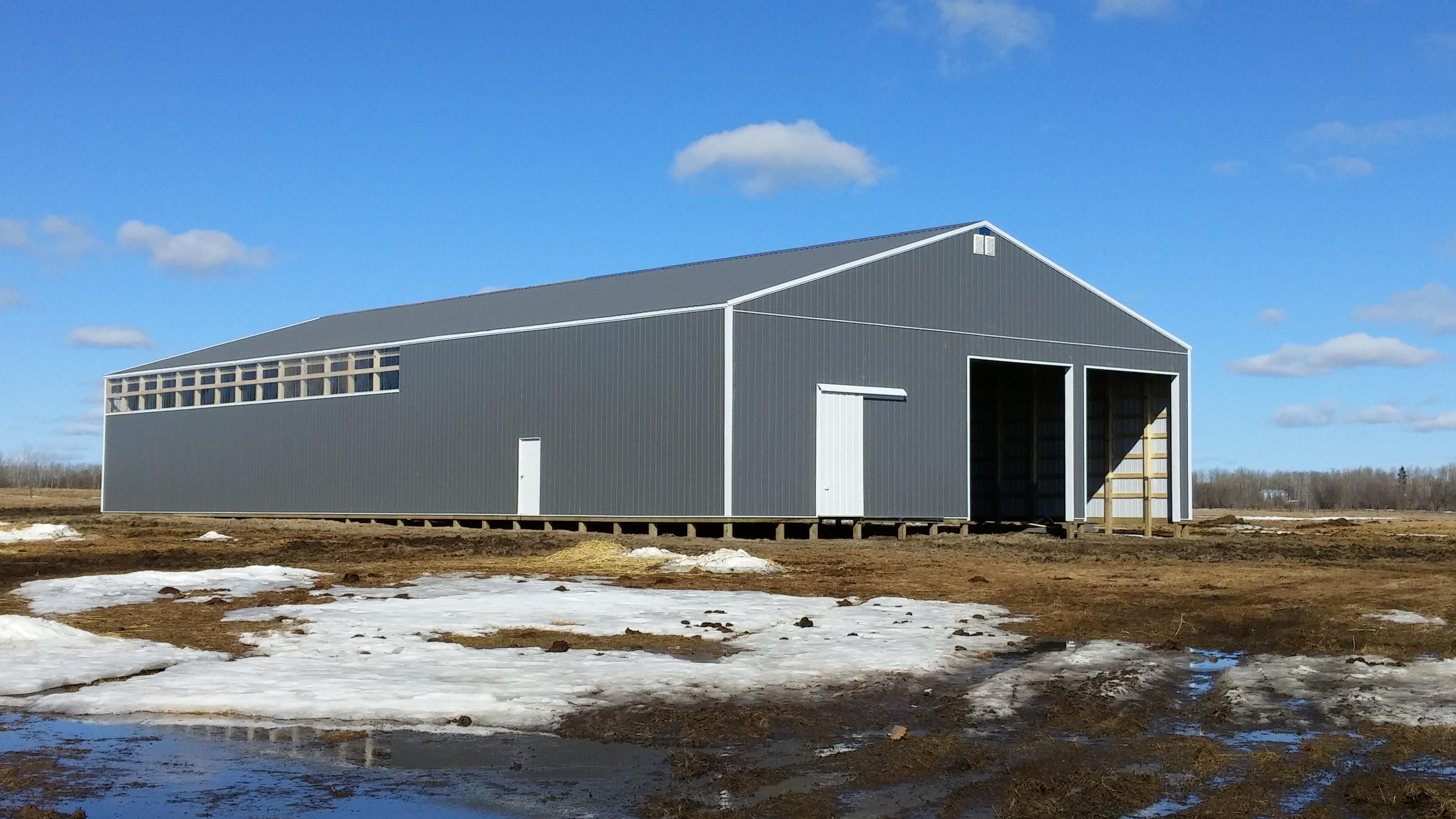 New lambing barn and shop.