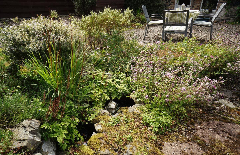 Dale Cottage garden 01.jpg