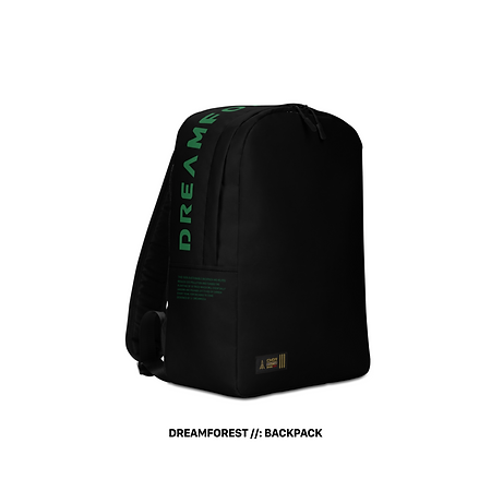 Backpack DF-1@2x.png