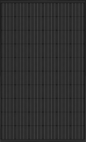 Black Frontside 1.png