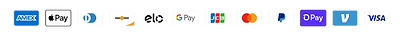 Shopify Payment Icons copy.png
