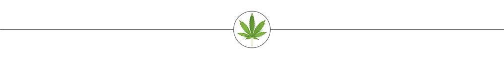 A cannabis cultivation blog by Fertile Pages. ©2019 fertilepages.com