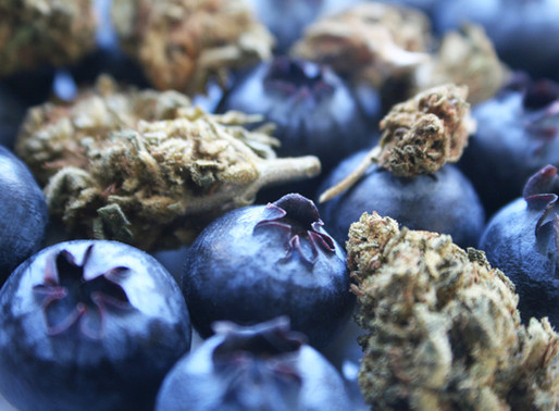 The Value of Terpenes To A Grower