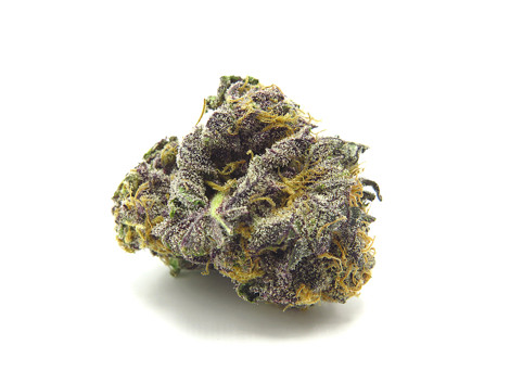 Colors of purple, lime and pineapple highlight a manicured bud with excellent structure.